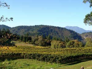 TripAdvisor names the top 10 U.S. winery tours.  (PRNewsFoto/TripAdvisor)